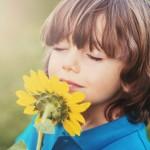 Geur en bloemen